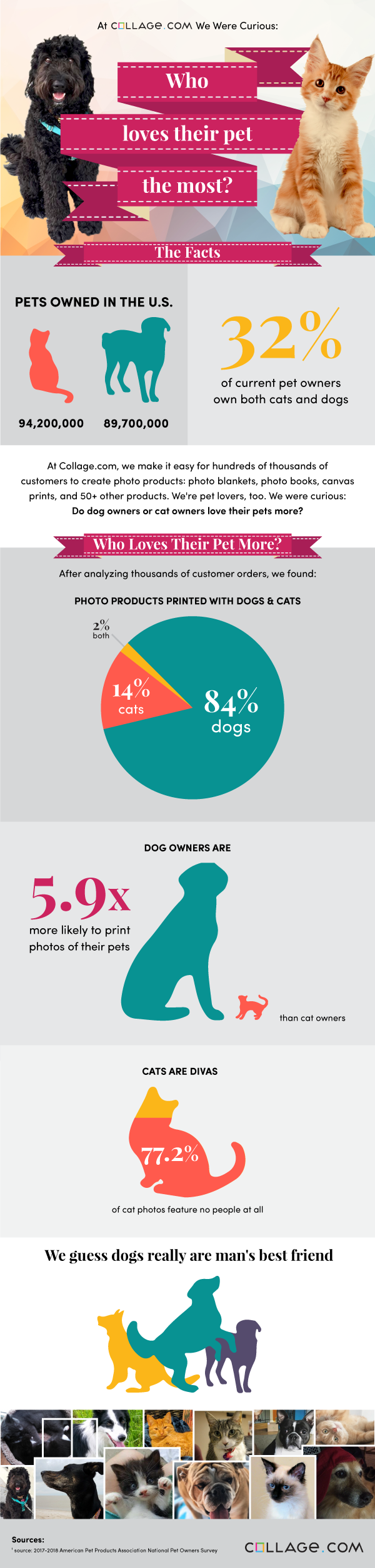 Do dog owners or cat owners love their pet more?