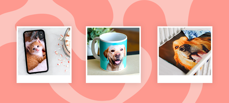 23 Gifts for Animal Lovers