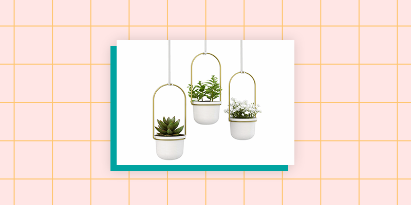 Indoor Hanging Wall Planter